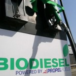 Il futuro dei biocarburanti sono i microbi
