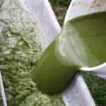 Biocarburante dalle alghe, la svolta dai nativi americani