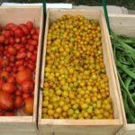 Prezzi alimenti: aumentano al dettaglio, ma calano sui campi